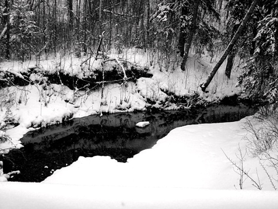 Snow in creek